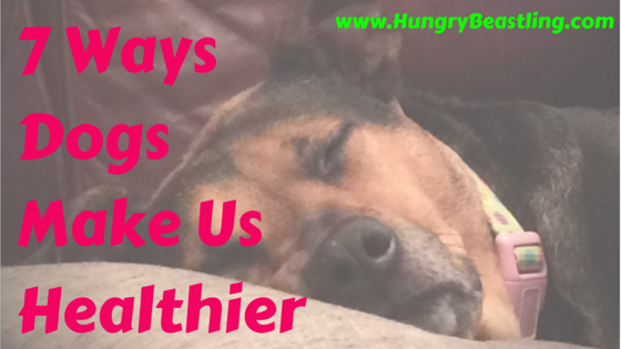 """Aside from loving us unconditionally and showing us the best """"welcome home"""" anyone could ever ask for, dogs make us healthier. But how?"""